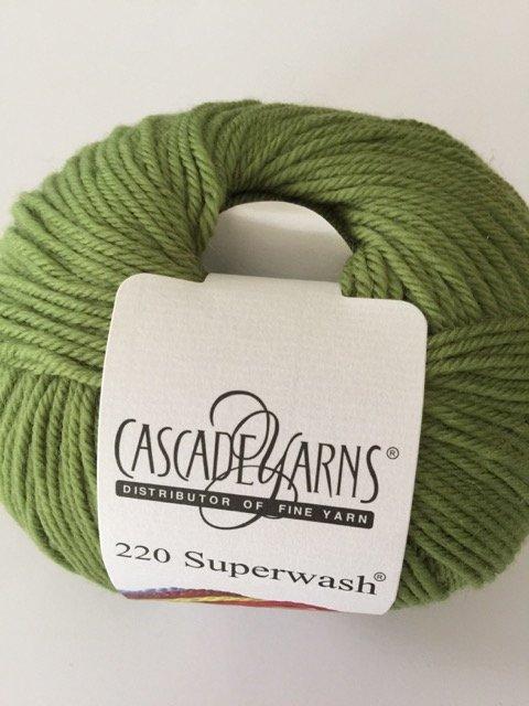 220 Superwash - Moss 841